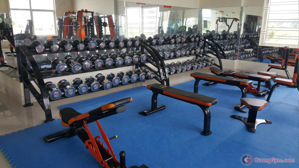 showroom may tap gym the hinh Cuong Thinh