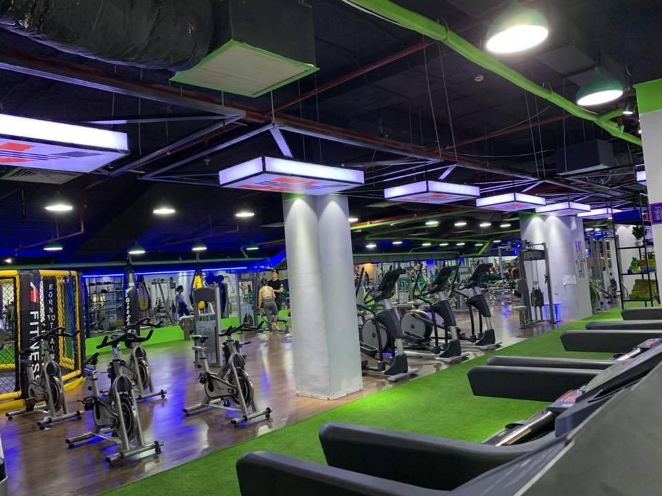 trang trí phòng tập gym
