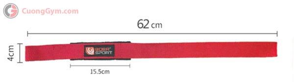 Thông số sản phẩm dây kéo lưng (Lifting Straps) CGB-112